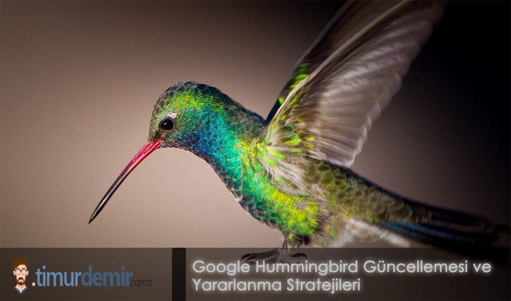 hummingbird guncellemesi
